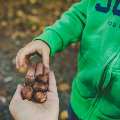 19 Unique Outdoor Activities For Toddlers