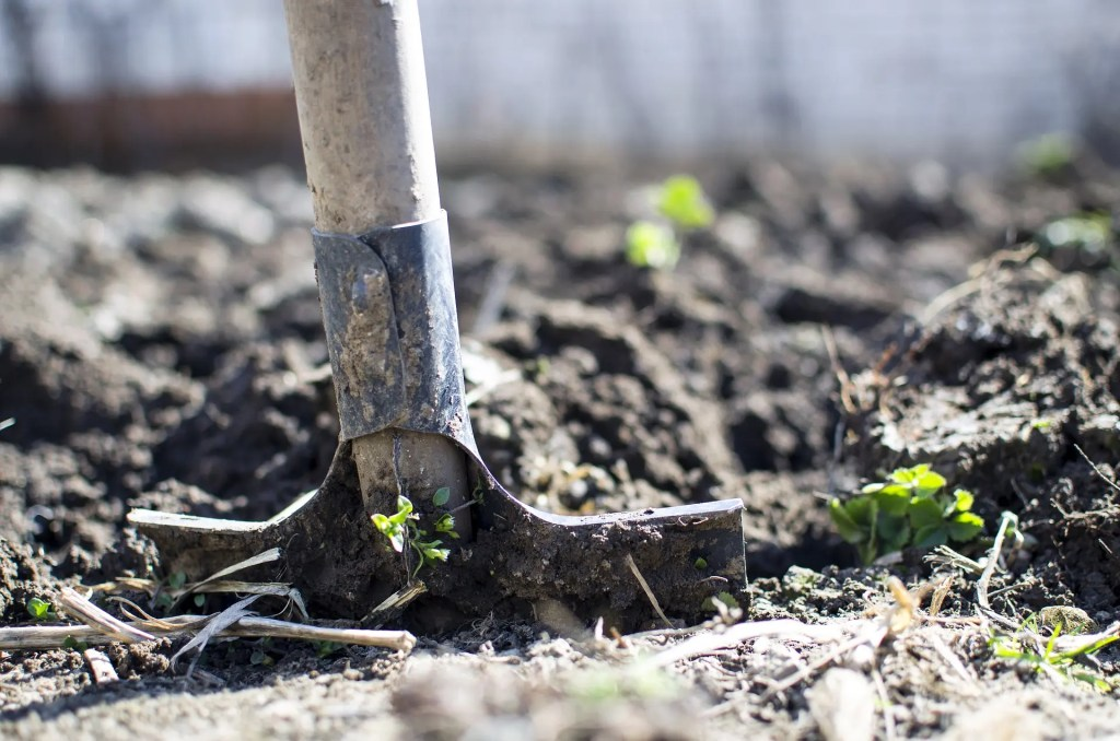 ways to test garden soil