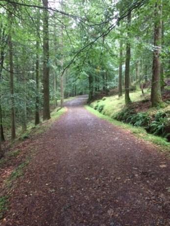 walk_trees