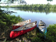 Love to paddle a canoe, go fishing, or watch wildlife? Learn more about how to enjoy your local riverways!