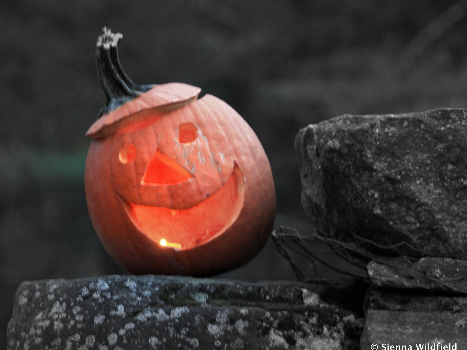 Photo: Learning through the lens of JACK-O-LANTERNS