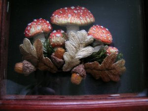 The mounted mushrooms and acorns