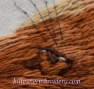 detail of eye on fox stitched in silk shading
