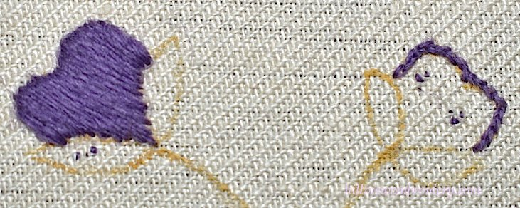 satin stitch and split stitch