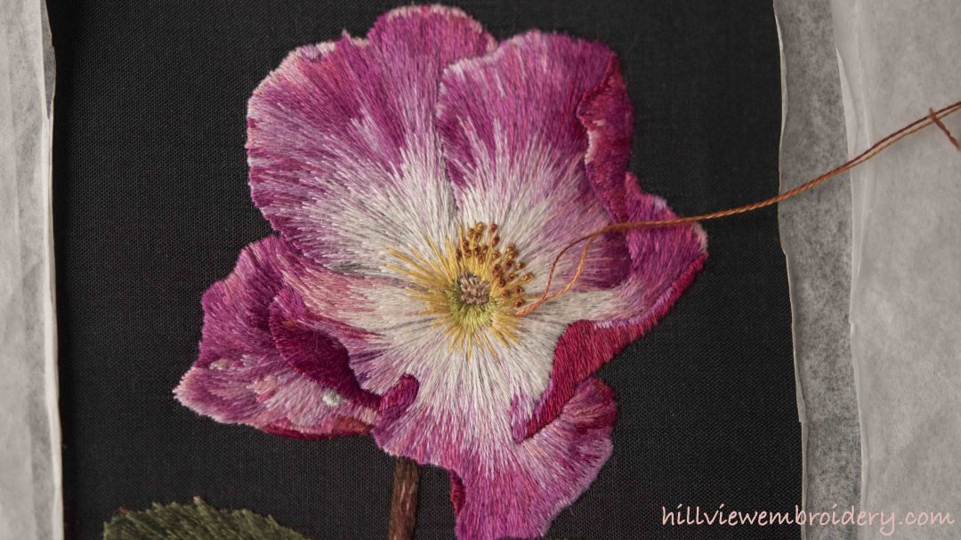 completed petals on the RSN Silk shaded rose