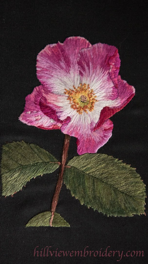 Silk shaded rose completed as part of the RSN Certificate
