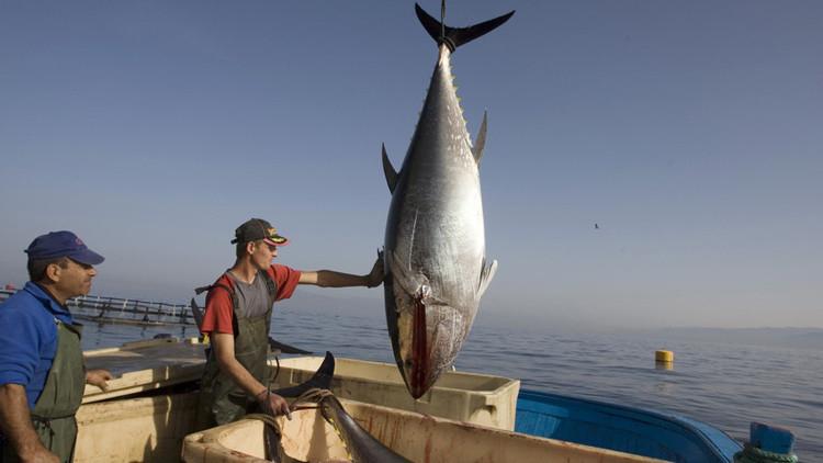 Guerra del atún, la disputa comercial que México le ganó a EU