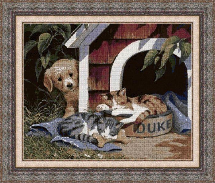 Animales 0122 1