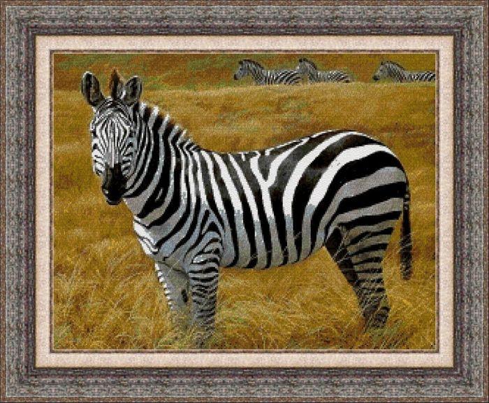 Animales 0053 1