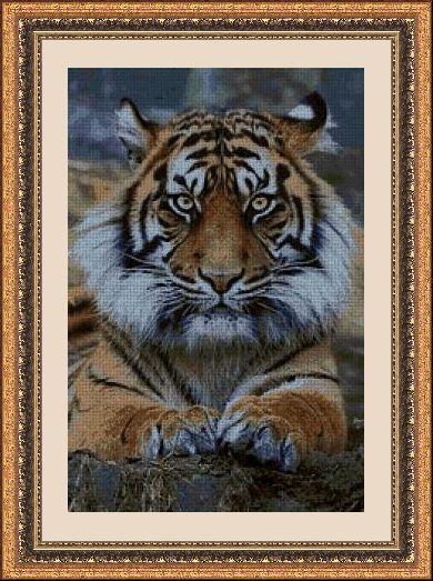 ANIMALES 30076