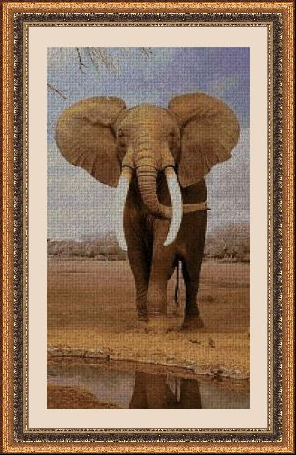 ANIMALES 30105