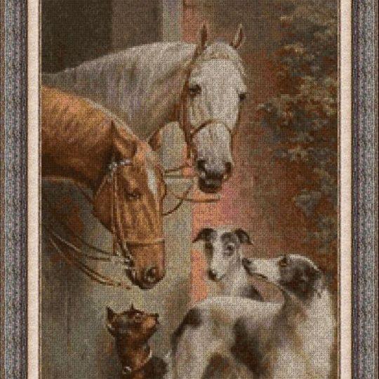 Animales 0117