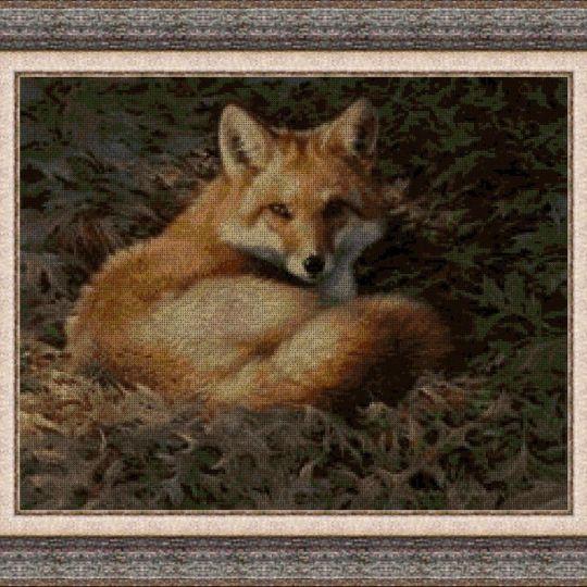 Animales 0023