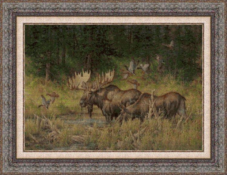 Animales 0037