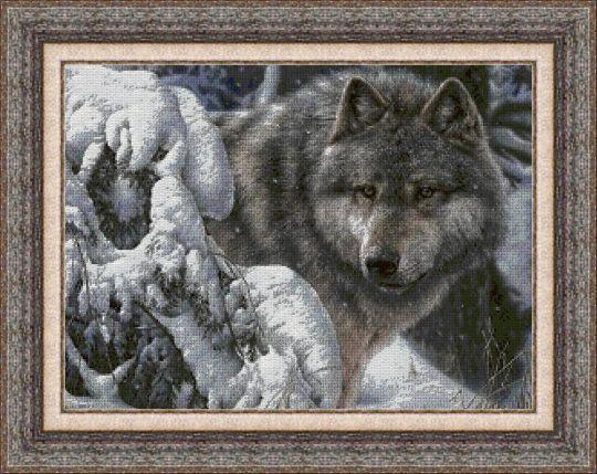 Animales 0046