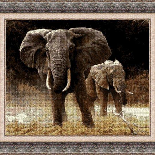 Animales 0052