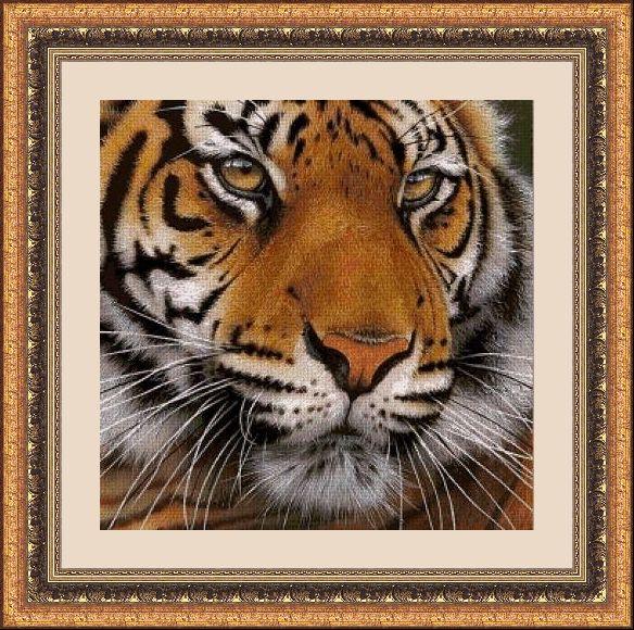 Animales 1068 1
