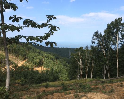 軍事道路からの眺め