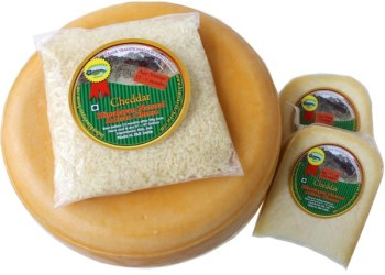 Natural artisan cheddar cheese made in the Himalayas of Kashmir India