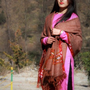 Women's Handloom Shawl Soft and Warm (Brown)
