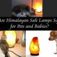 Are Himalayan Salt Lamps Safe for Pets and Babies?