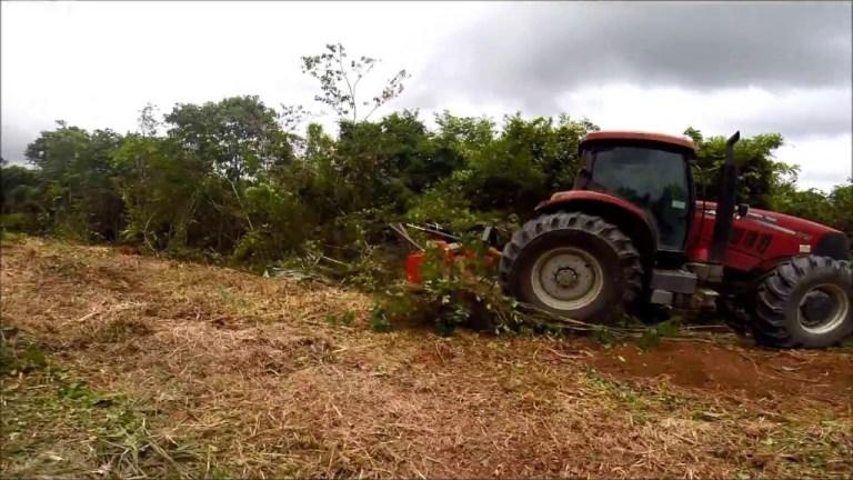 Triturador Florestal Himev Ecotritus HPH 270 limpando juquirão