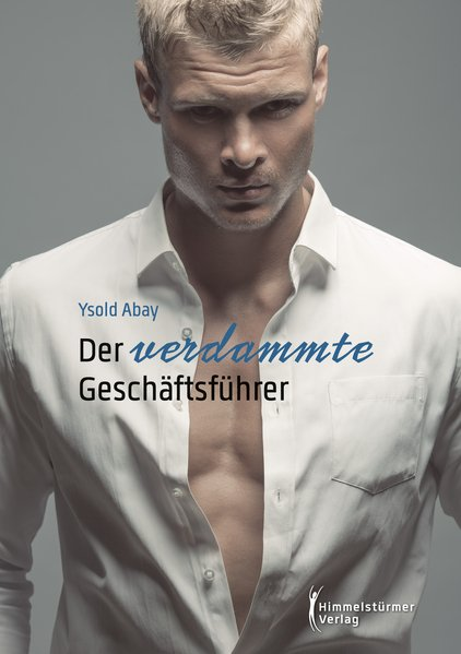 Der verdammte Geschäftsführer | Himmelstürmer Verlag