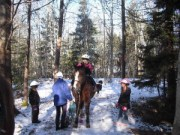Silver Bell takes kids out in to the snowy forest