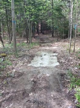 2016 Pathway Project Started