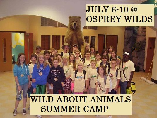 Wild about Animals Summer Camp