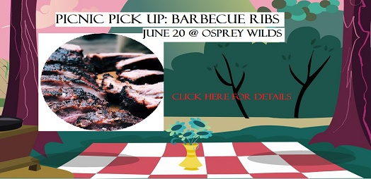 picnic, ribs, osprey wilds