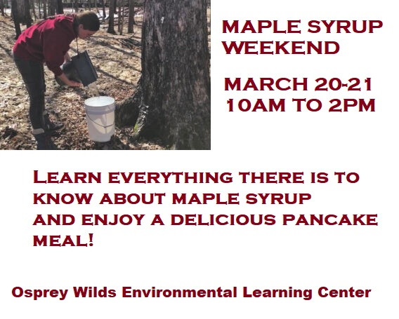 Maple, weekend, osprey wilds