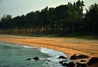 Beauty of the Beach