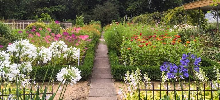 Open tuin zondag 6 september 2020