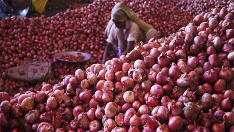 Onion Price Rise: खुशखबरी! अब चिंता न करें, पड़ोस से आ रही प्याज, पुराने  दोस्त ने दिया संकट में साथ | Zee News Hindi