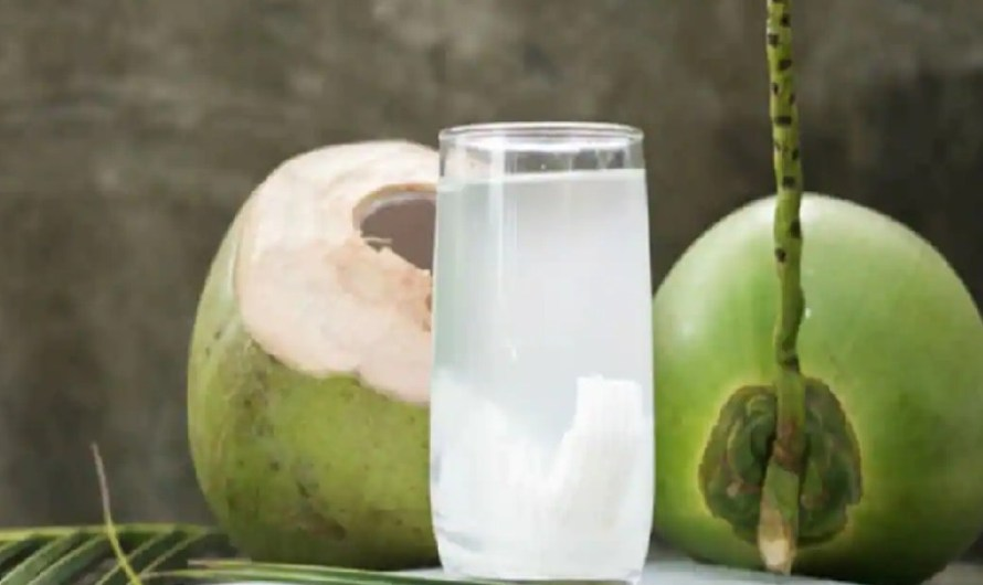 कोरोना में फायदेमंद है नारियल पानी, जानें इसके चमत्कारी लाभ