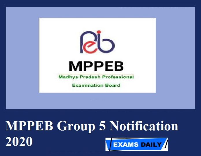 MPPEB Group 5 Notification 2020 – Last Date to Apply for 2000+ Vacancies Here!!!!