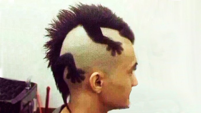 Crazy Animal Haircuts - Youtube throughout Weird But Cool Hairstyles Crazy Animal Haircuts