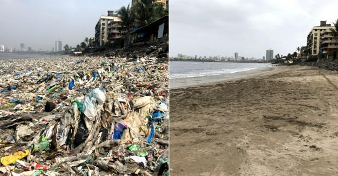 Clearing-500-Tonnes-of-Garbage-Mumbai-Couple-Keeps-Mahim-Beach-Alive-1