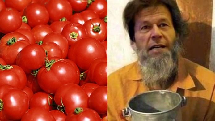 लहसुन टमाटर पाकिस्तान