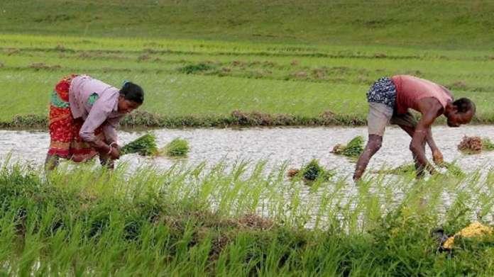 किसानों ने किया कृषि सुधार विधेयक का स्वागत