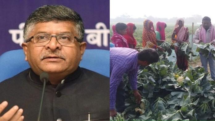 समस्तीपुर गोभी किसान नए कृषि कानून