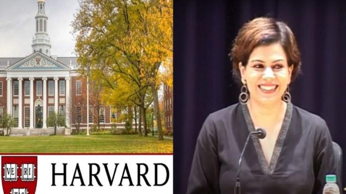 निधि राजदान, हार्वर्ड, पत्रकारिता