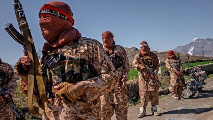तालिबान, अफगानिस्तान, भारत, पाकिस्तान, आतंकियों