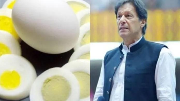 पाकिस्तान, इमरान खान, मुर्गियाँ