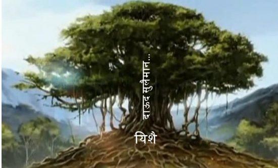 यशायाह के द्वारा राजवंश के लिए उपयोग किया हुआ चित्र एक बड़े बरगद के वृक्ष की तरह है, जो अपनी जड़ - यिशै से वृक्ष के तने का विस्तार करती है।