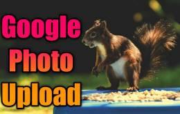 Google में खुद की फोटो कैसे अपलोड करें?