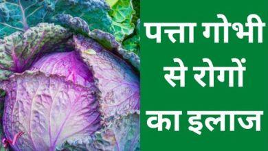 Photo of पत्ता गोभी से रोगों का इलाज – Cabbage in Hindi