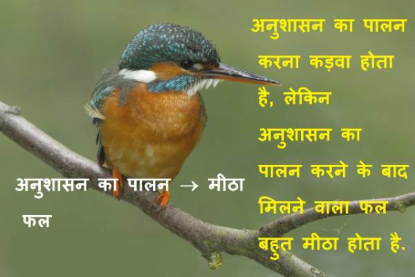 Discipline Quotes Thought Slogans in Hindi