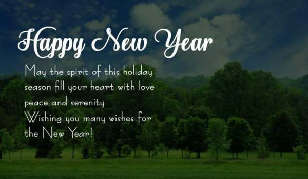 Happy new year dp and status